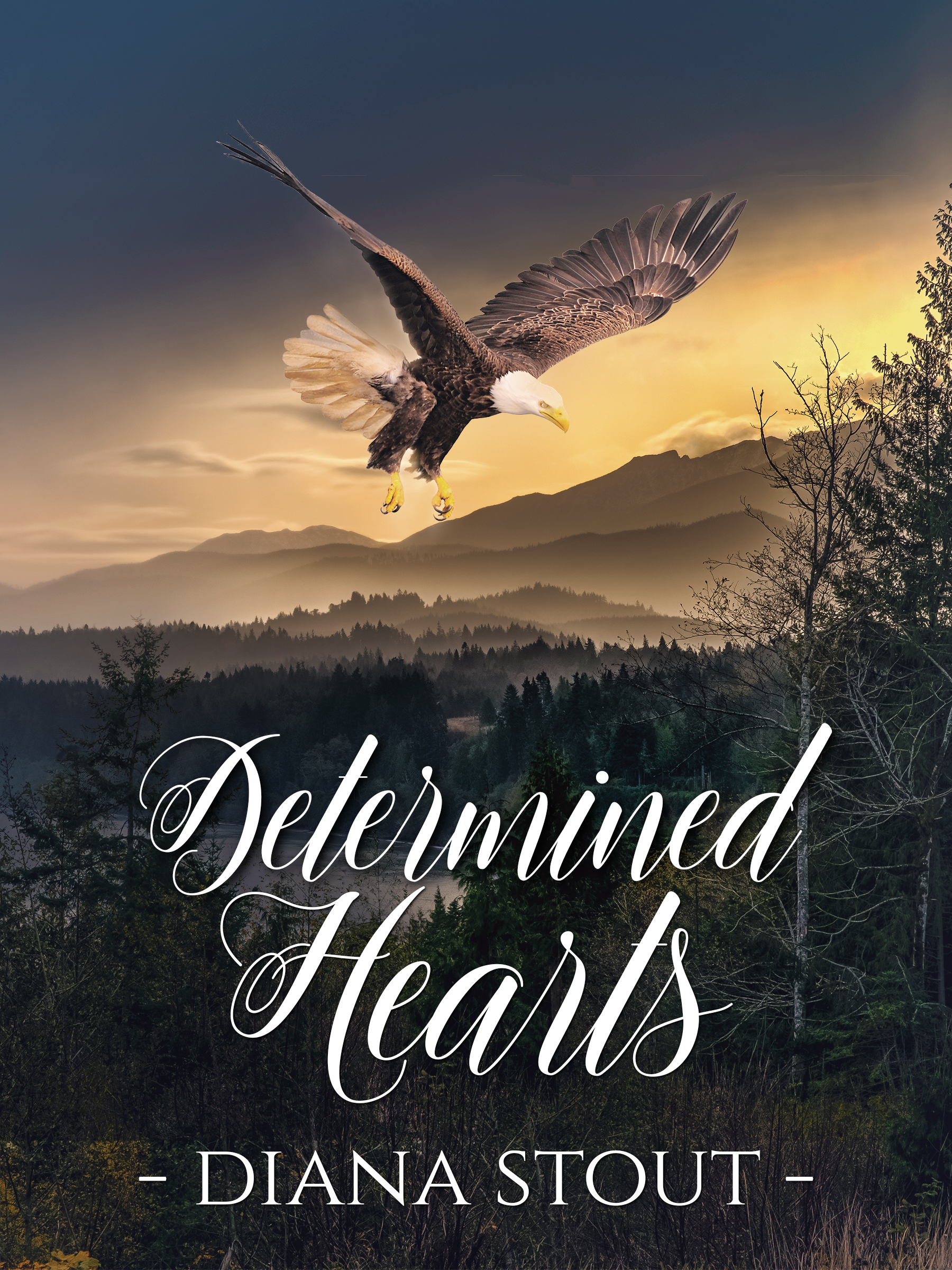 Determined Hearts 7 - FINAL ebook 4-13-17