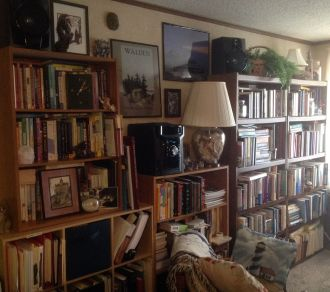 Diana's wall of books